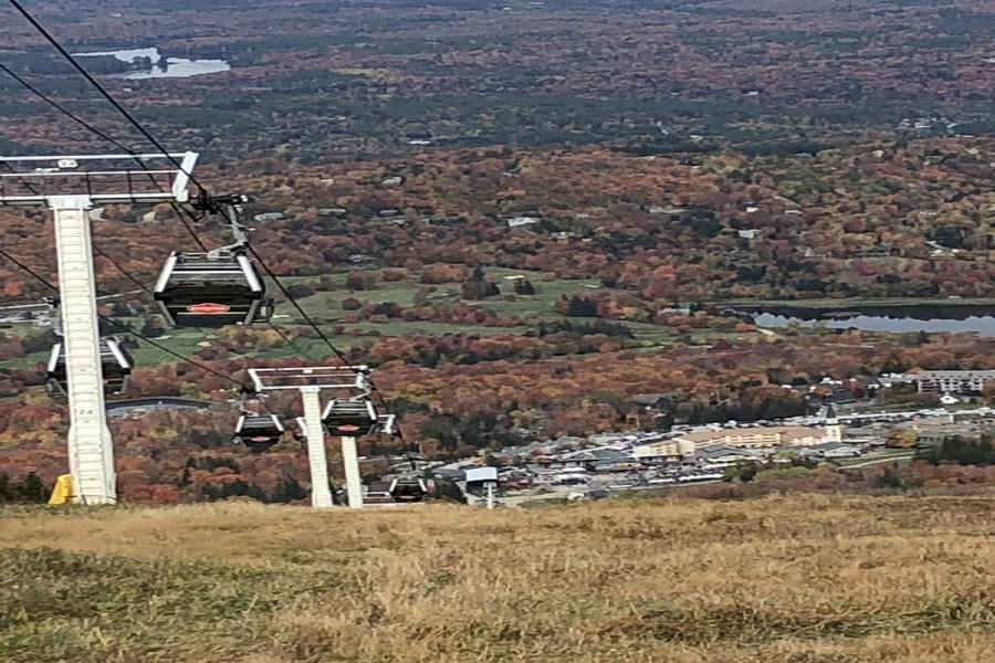 Thsi colorful scene is from atop a ski lift in Vermont. Leaves change color sooner in northern states due to changes in light and termperature.