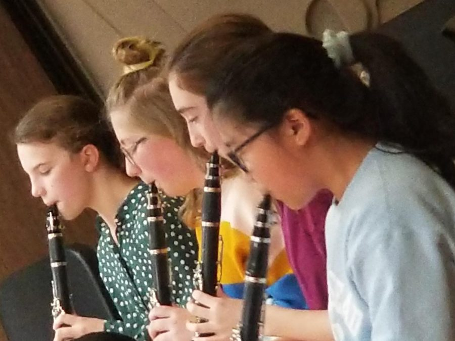 The clarinet is also a woodwind instrument . Clarinets are popular among musicians in the school band.