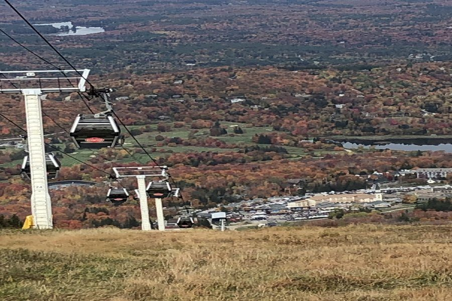 Thsi+colorful+scene+is+from+atop+a+ski+lift+in+Vermont.+Leaves+change+color+sooner+in+northern+states+due+to+changes+in+light+and+termperature.
