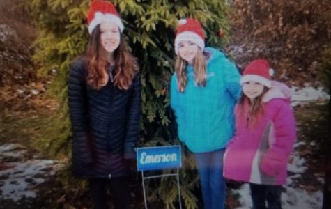Van Saun County Park's tree tradition