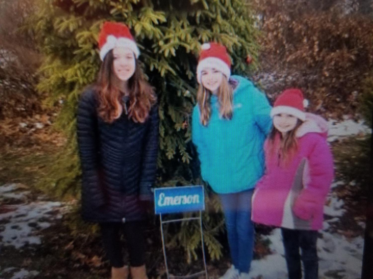 Kiera McGuire and sisters  Bella and Lila Hassett of Emerson helped decorate the borough's tree at Van Saun County Park earlier this month.