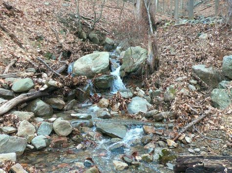 This is a photo of a miniature waterfall going down Bear Mountain. The park sits in the mountains near the Hudson Rivers west bank.